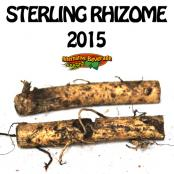 2015-Rhizomes-Sterling-AB.jpg